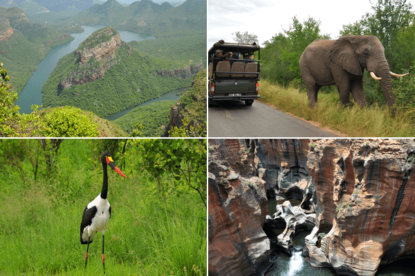 Crowned Eagle Tours & Safaris